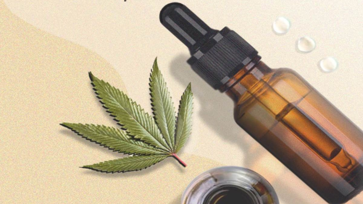 CBD Oil vs. Hemp-Seed Oil: What's the Difference?